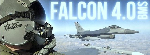 Falcon logo BMS 4