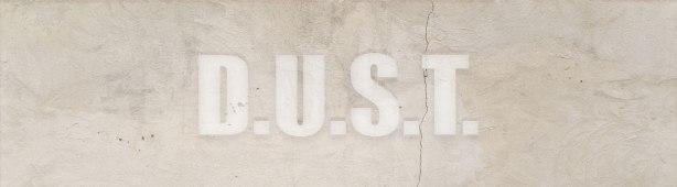 D.U.S.T. logo